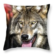 Of This Earth Throw Pillow
