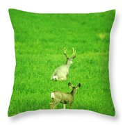 Oh For The Love Of Pete Throw Pillow