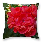Oh My Red Throw Pillow