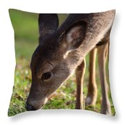 Oh So Sweet Throw Pillow