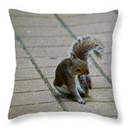 Oh That's The Spot Throw Pillow