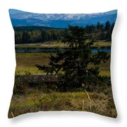 Ohop Valley Rainier Throw Pillow