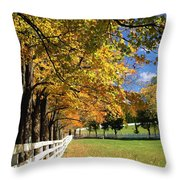 Oh..what A Beautiful Morning Throw Pillow