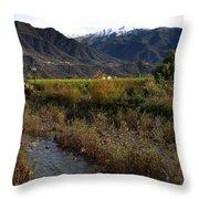 Ojai Valley Throw Pillow