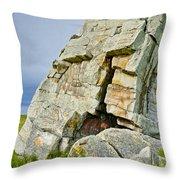 Okotoks Erratic -  Throw Pillow