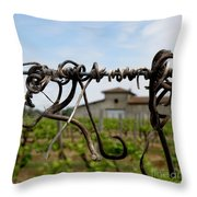 Old And New  Throw Pillow by Lainie Wrightson