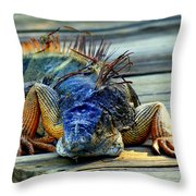Old And Weary Throw Pillow
