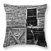 Old Barn Door In Black And White Throw Pillow