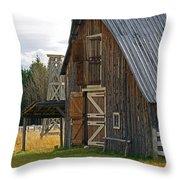 Old Barn Doors Throw Pillow