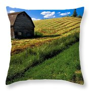 Old Barn In A Field Throw Pillow