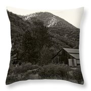 Old Barn In Black And White Throw Pillow