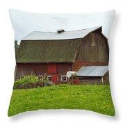 Old Barn On 264th. Street Throw Pillow