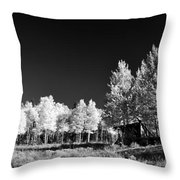 Old Cabin In The Aspen Throw Pillow
