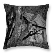 Old Clark Homestead Lost Valley Throw Pillow