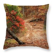 Old Country Road In Shannon County Throw Pillow