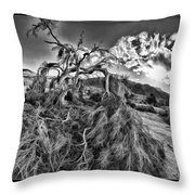 Old Desert Tree Throw Pillow