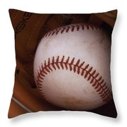 Old Friends 1 Throw Pillow by Stephen Anderson