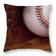 Old Friends 3 Throw Pillow by Stephen Anderson