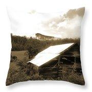 Old Hay Barn Throw Pillow