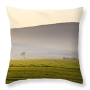 Old House On The Field Throw Pillow