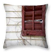 Old House Red Shutter 3 Throw Pillow