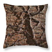 Old Ivy Throw Pillow