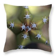 Old Man Cactus Lophocereus Schottii Throw Pillow