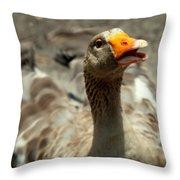 Old Mother Goose Throw Pillow