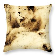 Old Photograph Of A Lion On A Rock Throw Pillow