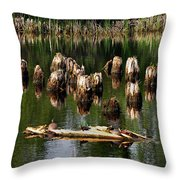 Old Pier Pylons Throw Pillow