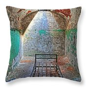 Old Prison Cell Throw Pillow