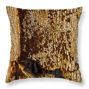 Old Rusty Door Throw Pillow