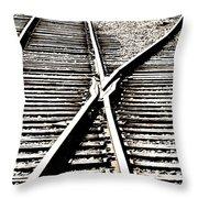 Old Siding Throw Pillow