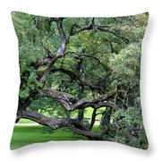 Old Soul In Oslo Throw Pillow