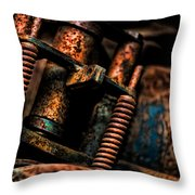 Old Springs Throw Pillow