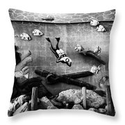 Old Trader Rickys Throw Pillow