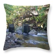 Old Train Trestles Throw Pillow