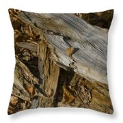 Old Tree Trunks And Leaves Decaying Throw Pillow