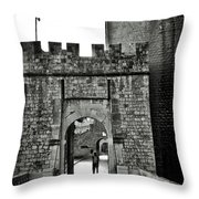 Old Walls Throw Pillow