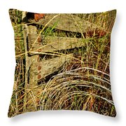 Old Weathered Gate Throw Pillow