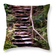 Old Wet Stone Steps Throw Pillow
