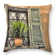 Old Window And A Green Plant Throw Pillow