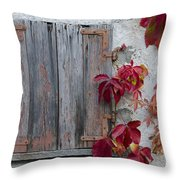 Old Window With Red Leaves Throw Pillow