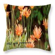 Old Zen Proverb Throw Pillow