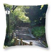 Oldbridge Steps Throw Pillow