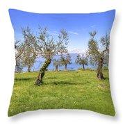 olive grove on Lake Gardan Throw Pillow