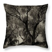 Olive Trees 9 Throw Pillow