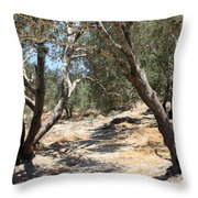 Olive Trees At Sebastia Throw Pillow