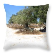 Olive Trees In Samaria Throw Pillow