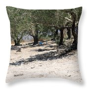 Olive Trees In Sebastia Nablus Throw Pillow